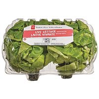 PC Live Lettuce Green, Red/Green or Trio