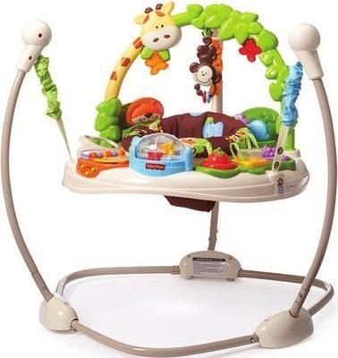 64c2adcfc9f Toys R Us: Fisher-Price Go Wild Jumperoo - RedFlagDeals.com