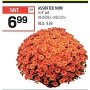 Assorted MUM  - $6.99 ($1.70 off)