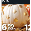 Small Craft Pumpkins - $6.99
