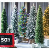 All Trees - Up to 50% off